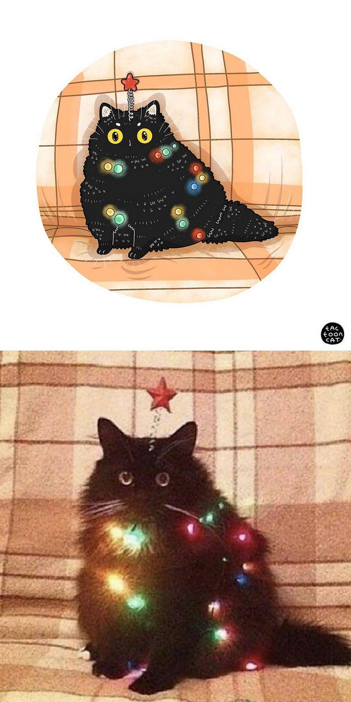Artista transforma fotos engraçadas de gatos em ilustrações (35 fotos) 9