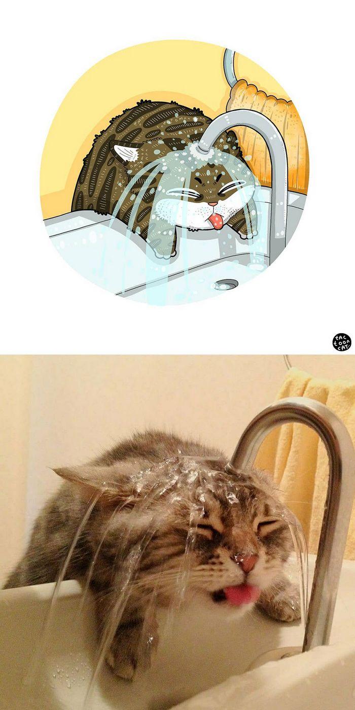 Artista transforma fotos engraçadas de gatos em ilustrações (35 fotos) 10