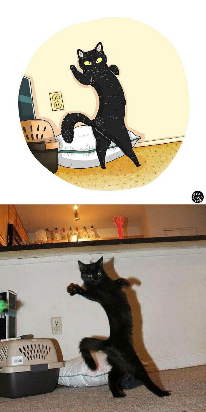 Artista transforma fotos engraçadas de gatos em ilustrações (35 fotos) 14
