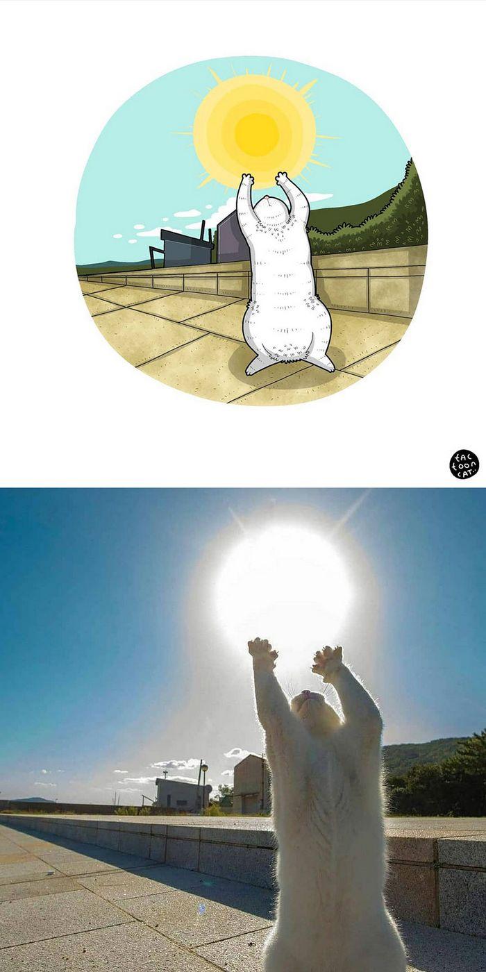 Artista transforma fotos engraçadas de gatos em ilustrações (35 fotos) 15