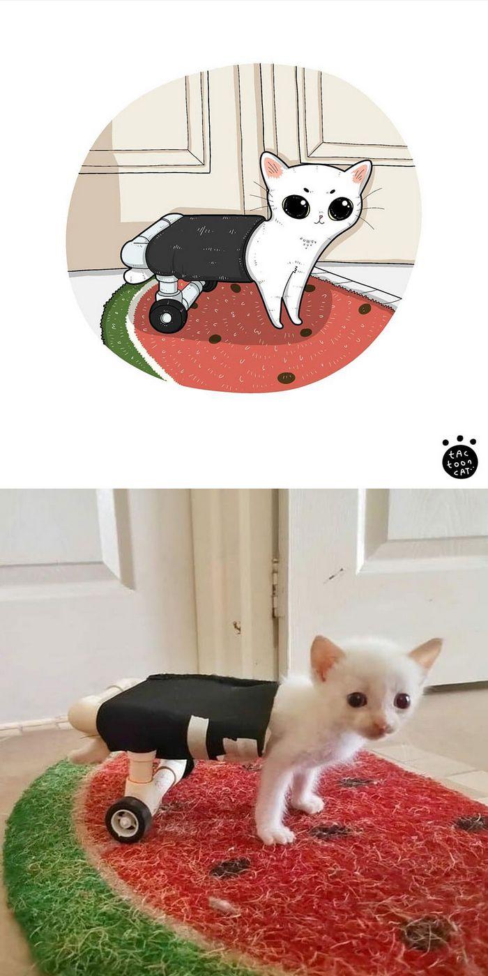 Artista transforma fotos engraçadas de gatos em ilustrações (35 fotos) 21