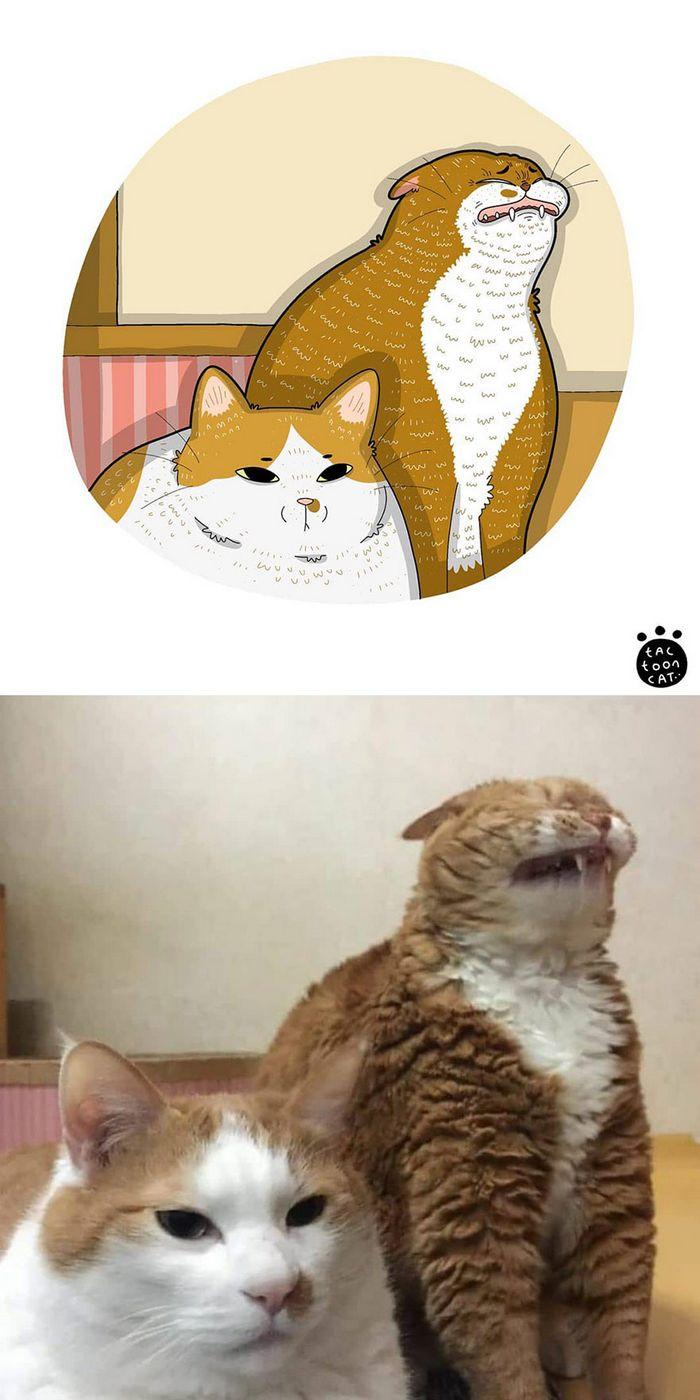 Artista transforma fotos engraçadas de gatos em ilustrações (35 fotos) 22