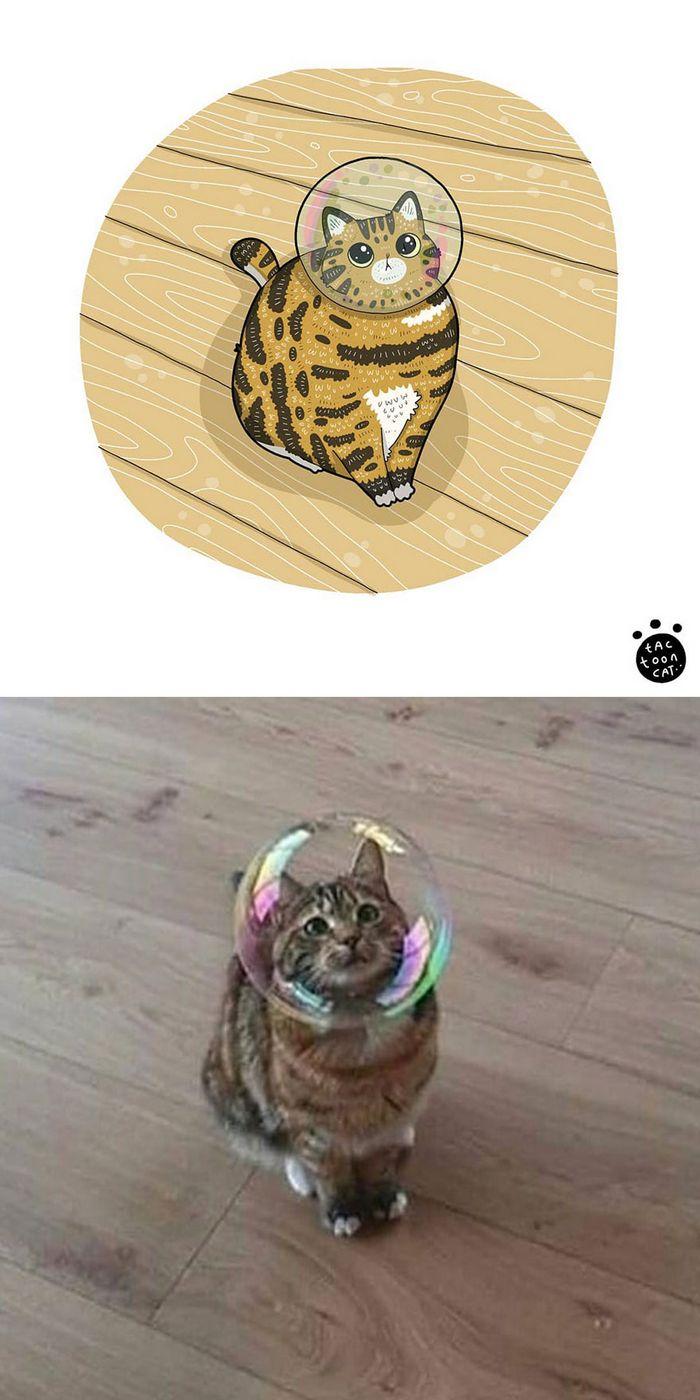 Artista transforma fotos engraçadas de gatos em ilustrações (35 fotos) 25