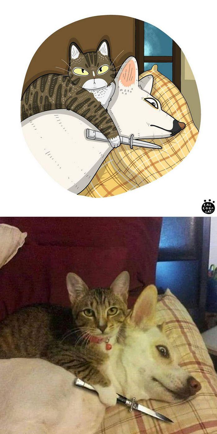 Artista transforma fotos engraçadas de gatos em ilustrações (35 fotos) 30