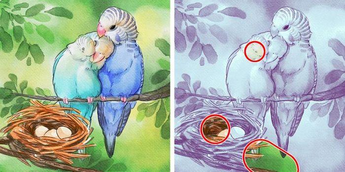 Jogo do erro: Teste sua capacidade de observação e encontra as 3 diferenças nas imagens 11