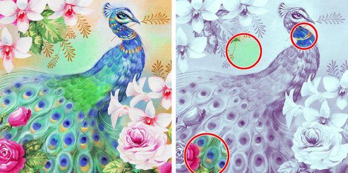 Jogo do erro: Teste sua capacidade de observação e encontra as 3 diferenças nas imagens 25
