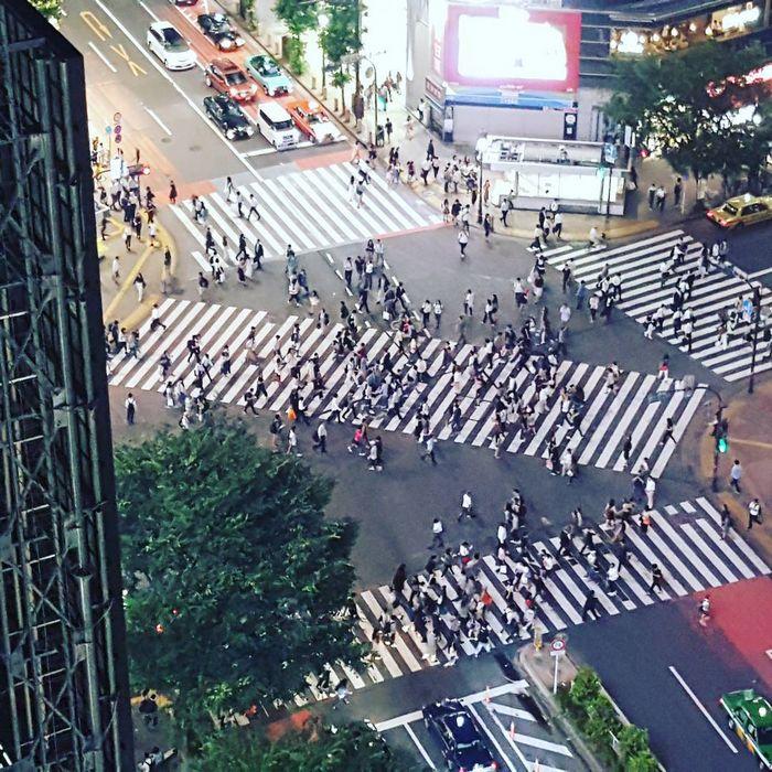 25 fatos que provam que o Japão é um país de outro planeta 9