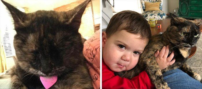 46 fotos hilárias de antes e depois de como a vida muda depois de ter filhos 20