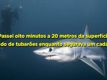 25 histórias de experiências mais assustadoras de mergulhadores 16