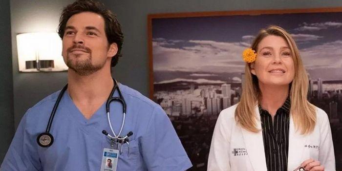 10 separações mais dolorosas da série Grey's Anatomy 2