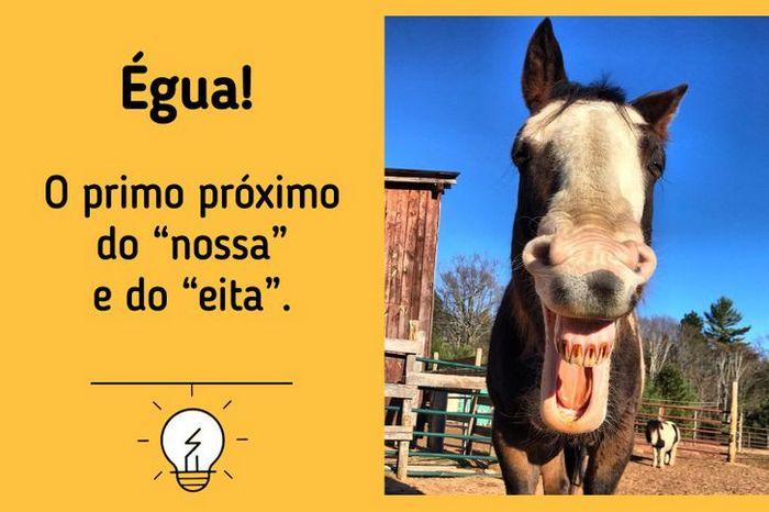 10 gírias brasileiras e seus significado 3