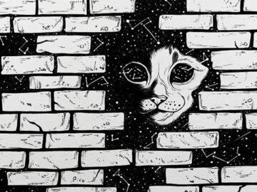 Ilustrador combina animais, pessoas e o céu noturno para criar arte mágica (26 fotos) 5