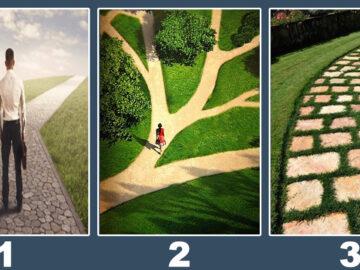 Qual caminho você deve seguir em sua vida? 10