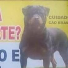 10 placas hilárias feitas por brasileiros