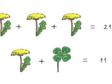 Desafio matemático: Qual o valor da equação? 33